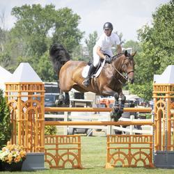 Un cavalier et sa monture saute au-dessus d'une barrière lors d'une compétition équestre à l'extérieur.