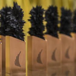 Prix du Gouverneur général pour l'innovation