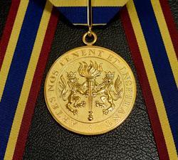 Prix du Gouverneur général pour les arts du spectacle