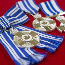 Décorations pour service méritoire (division civile)