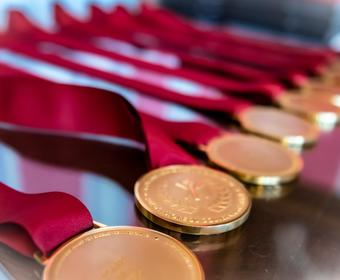 Gold medals with red ribbons are aligned on a table.